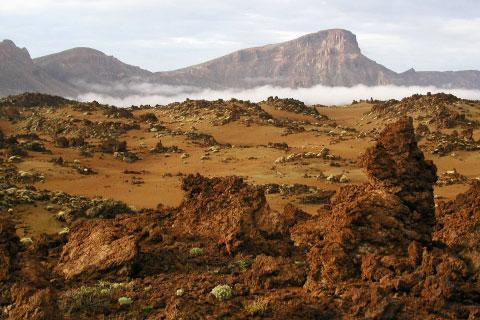 Colores y texturas en el Teide