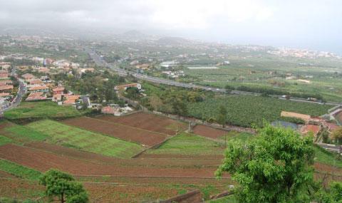 Medianía de La Orotava