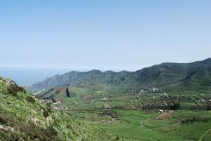 Valle del Palmar, Buenavista