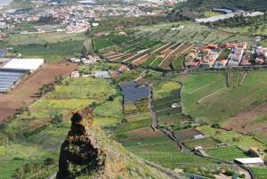 Cultivo de regadío, La Laguna