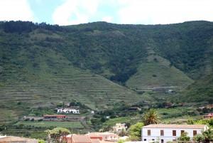 Valle de Tegueste, Tegueste