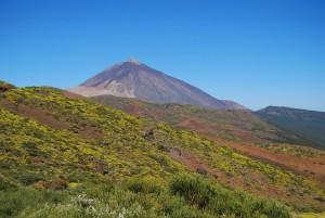 Matorral de cumbre (El Teide)